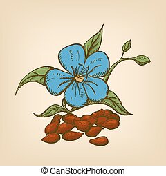 Dried seeds of dark flax with flowers. Vector illustration. Hand drawn illustration.