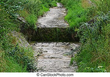 Dried stream by the forest. Beautiful green nature without water. Hot summer weather and drought. Concept for ecology and environment.