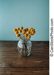 Dried sunny flowers Craspedia globosa.