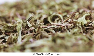 Medicinal herbs thyme in bulk
