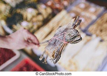 Dried tokay gecko in Chinatown street market - Human hand...
