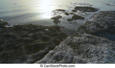 Drifting ice on the sea.
