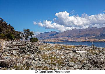 Driftwood and rocks on the Shore of Lake Wanaka