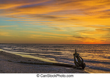 Driftwood on a Lake Huron Beach at Sunset