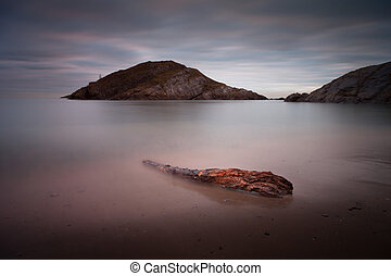 Driftwood on Mumbles beach