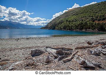 Driftwood on the shore of Lake Wanaka in New Zealand