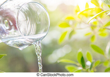 Drink water in glass over sunlight natural yello background