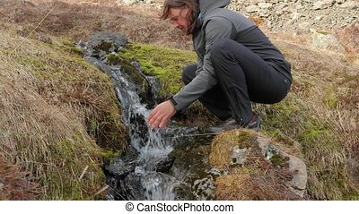 Drinking from a stream in Iceland - Drinking water from a...