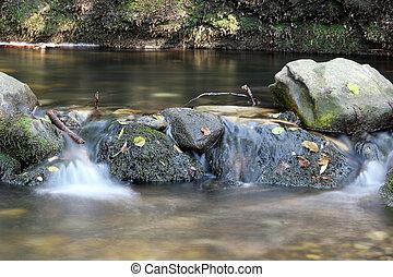 drinkwater, lente, natuur scène