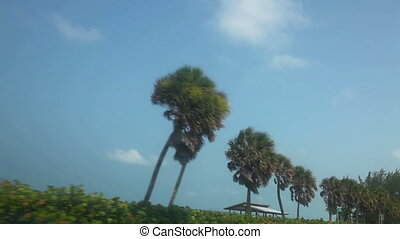 Drive along Florida beach