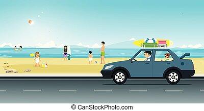 Drive the beach