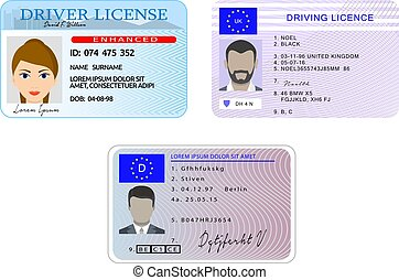 Driver license banner horizontal set, flat style