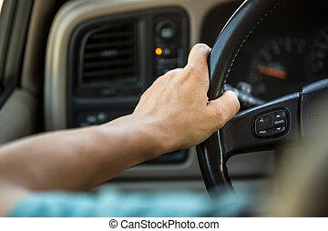 driver, mani, il, volante