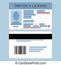 Drivers License - Illustration of driver's license front and...