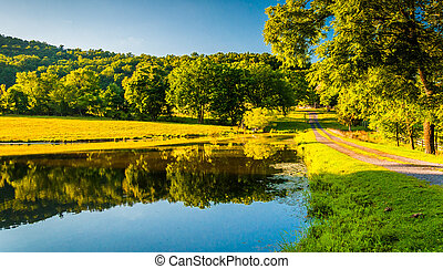 Driveway and trees reflecting in a pond in the Shenandoah Valley, Virginia.