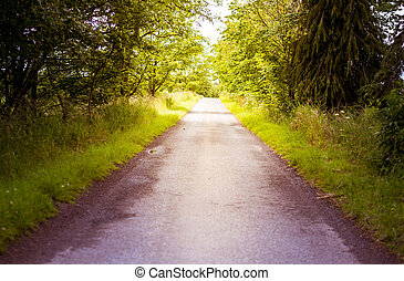 Driving along a countryside road in summer, central Scotland, Scenic countryside landscape with trees