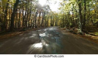 Driving along mountain road in autumn to Ai-Petri, Crimea, Ukraine