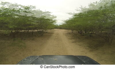 Driving in a Desert Time Lapse
