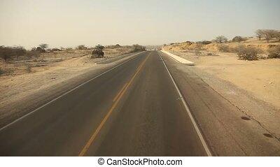 Driving In Desert, Panamericana