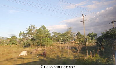 Driving in Dominican. Outskirts.