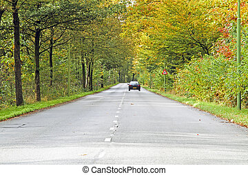 Driving in the countryside from the Netherlands in fall