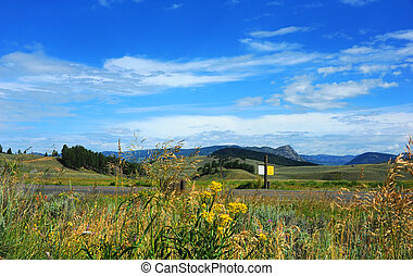 """Road runs in front of the rolling hills of Lamar Valley in Yellowstone National Park. Sign say """"Caution Wildlife on Highway."""""""