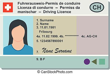 Driving license icon, flat style.