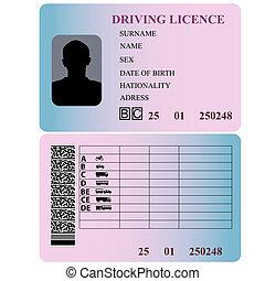 Driving license. Vector illustration.