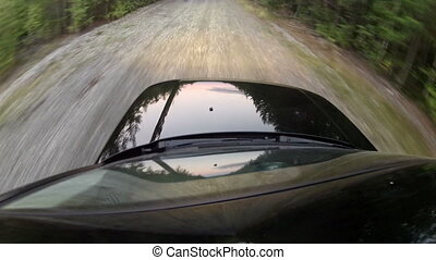 Driving on a road along the forest