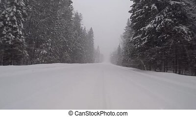 driving on a winter forest road in a snow storm