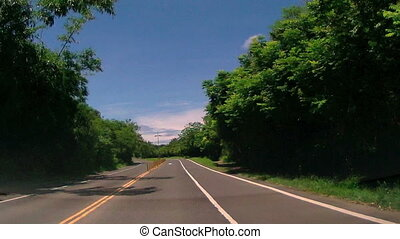 Driving through the Country Roads at summer time