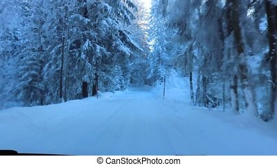 Driving through the winter forest on snowy road, austria.