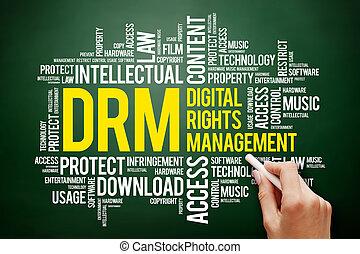 drm, gestion, -, numérique, droits