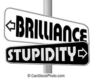 droga znaczą, brillance, -, głupota