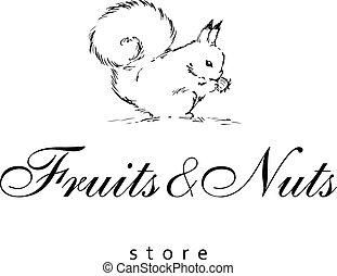 drogheria, concetto, scoiattolo, disegnato, mano, fondo., vettore, logotipo, store., bianco