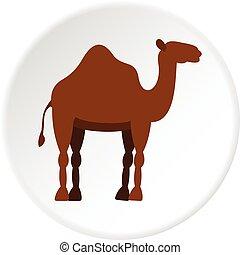 Dromedary camel icon circle