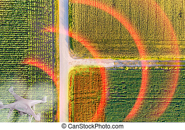 Drone above agriculturl fiels - High technology used in...