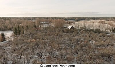Drone Flying Above Leafless Autumn Forest After The First Snow in morning
