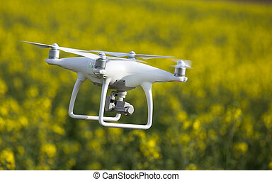 Drone flying above rapeseed field