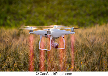 Drone flying above wheat field and mapping - Drone flying...
