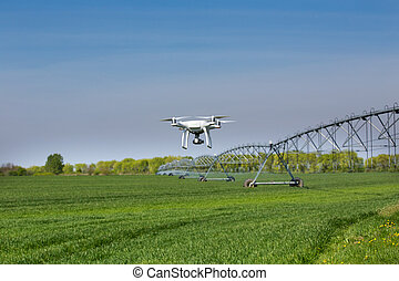 Drone flying above green wheat field with irrigation system in background