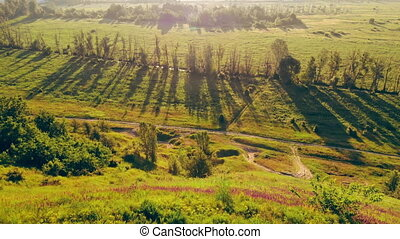 aerial view on beautiful summer nature countryside at the sunrise drone fly over meadow with green grass