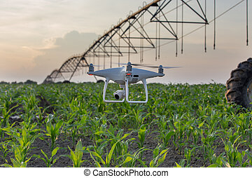 Drone flying in front of irrigation system in corn field