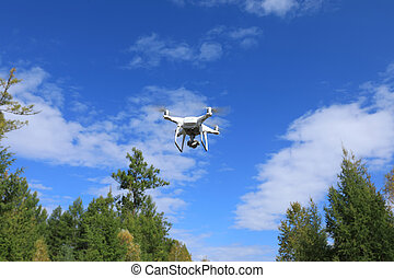 drone flying in the autumn forest