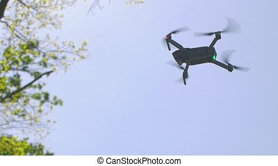 Drone hovers in the sky and green tree gray slow motion
