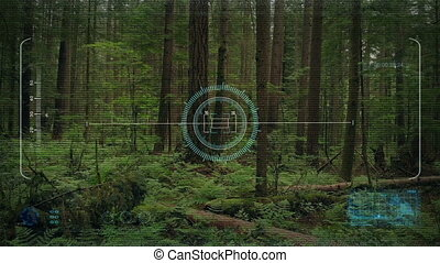 Drone HUD POV Rising From Forest Floor - Drone pov with hud...
