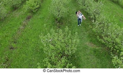Drone shot of couple dating in green apple orchard