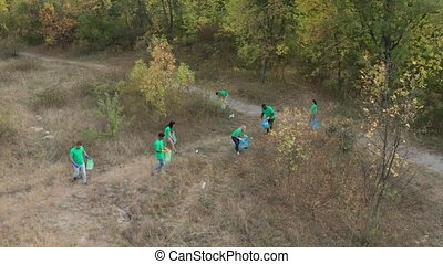 Aerial view of responsible multinational volunteers in green shirts picking up plastic waste scattered among autumn forest. Team of multi-ethnic people taking care of natural environment outdoors
