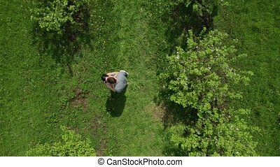 Drone shot of marriage proposal in apple garden - Aerial...