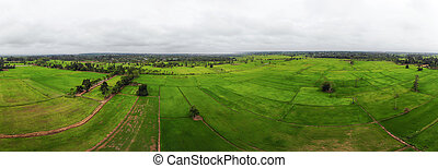 Drone shot panorama Aerial view landscape scenic of rural agriculture rice field